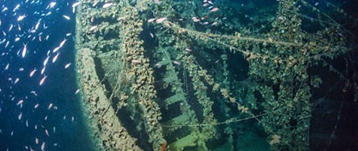 L'HMS Safari
